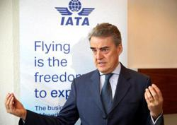 IATA: Govts must cut red tape to revive air cargo