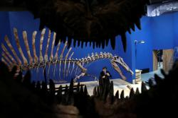 'River monster': Huge African dinosaur Spinosaurus thrived in the water