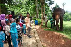 Struggling zoos seek funds