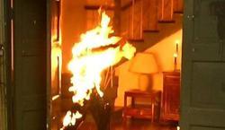 Girl burned to death in revenge attack