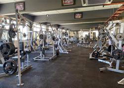With zero income over two months, gyms are desperate to reopen