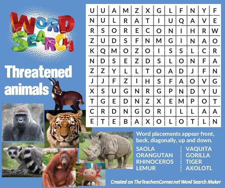 Find the list of endangered animals in the wordsearch puzzle!