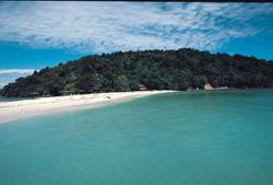 Sabah Parks director: Only 100 visitors per day allowed at marine, nature parks