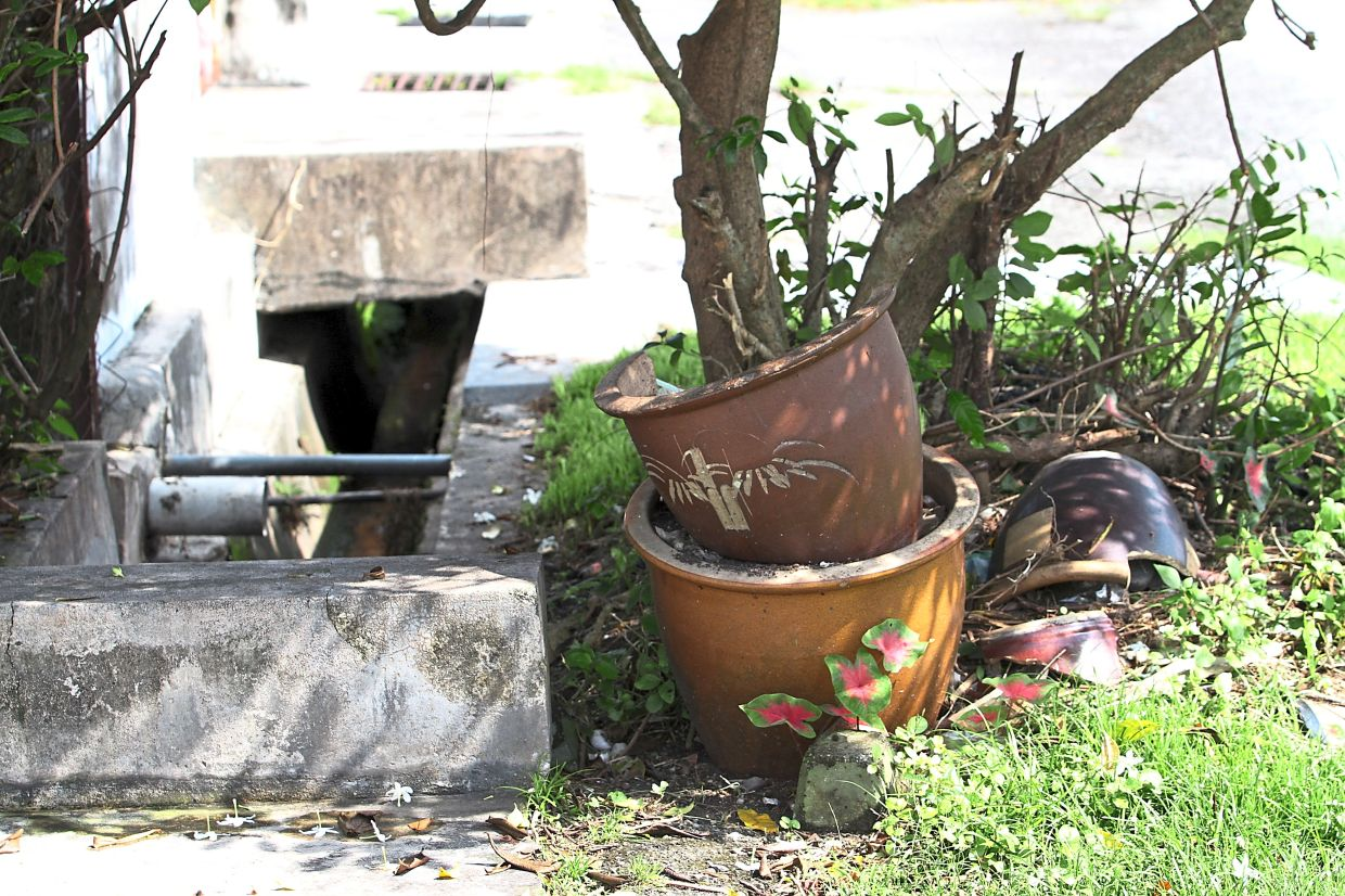 Empty flower pots and clogged drains (pictured below) are breeding spots for Aedes mosquitoes.