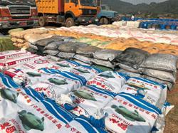 Huge fentanyl haul seized in Golden Triangle