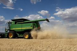 China imposes anti-dumping duties on Australian barley