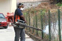 Ipoh city council 'not to blame' for dengue spike