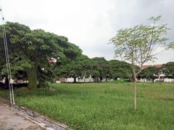 Cases of mosquito-borne disease on the rise in Perak