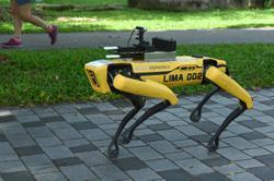 Covid-19: Robot dog on virus park patrol in Singapore