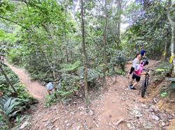 Bukit Kiara a safer trail for hikers, says community group