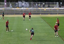 Australian Medical Association slams 'absurd' NRL crowd plan