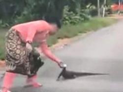 Man overcomes his phobia to rescue monitor lizard
