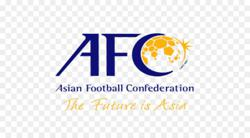 Vietnam first in SEA to resume competitive football with spectators: AFC