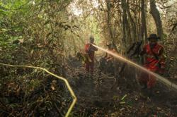 Covid-19 presents Indonesia with new challenges in forest fire control