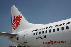 Lion Air Group temporarily suspends domestic flights amid confusion