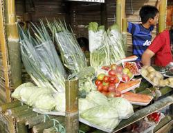 Sabah farmers overcome MCO challenges with technology