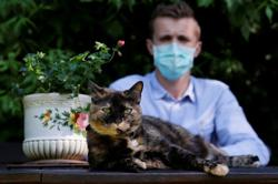 Feline good - French cat survives coronavirus infection