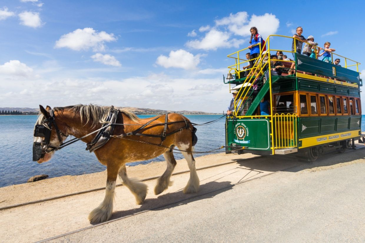Hop on the iconic horse-drawn tram and watch in awe of the beautiful coastline. Photo: South Australia Tourism Commission