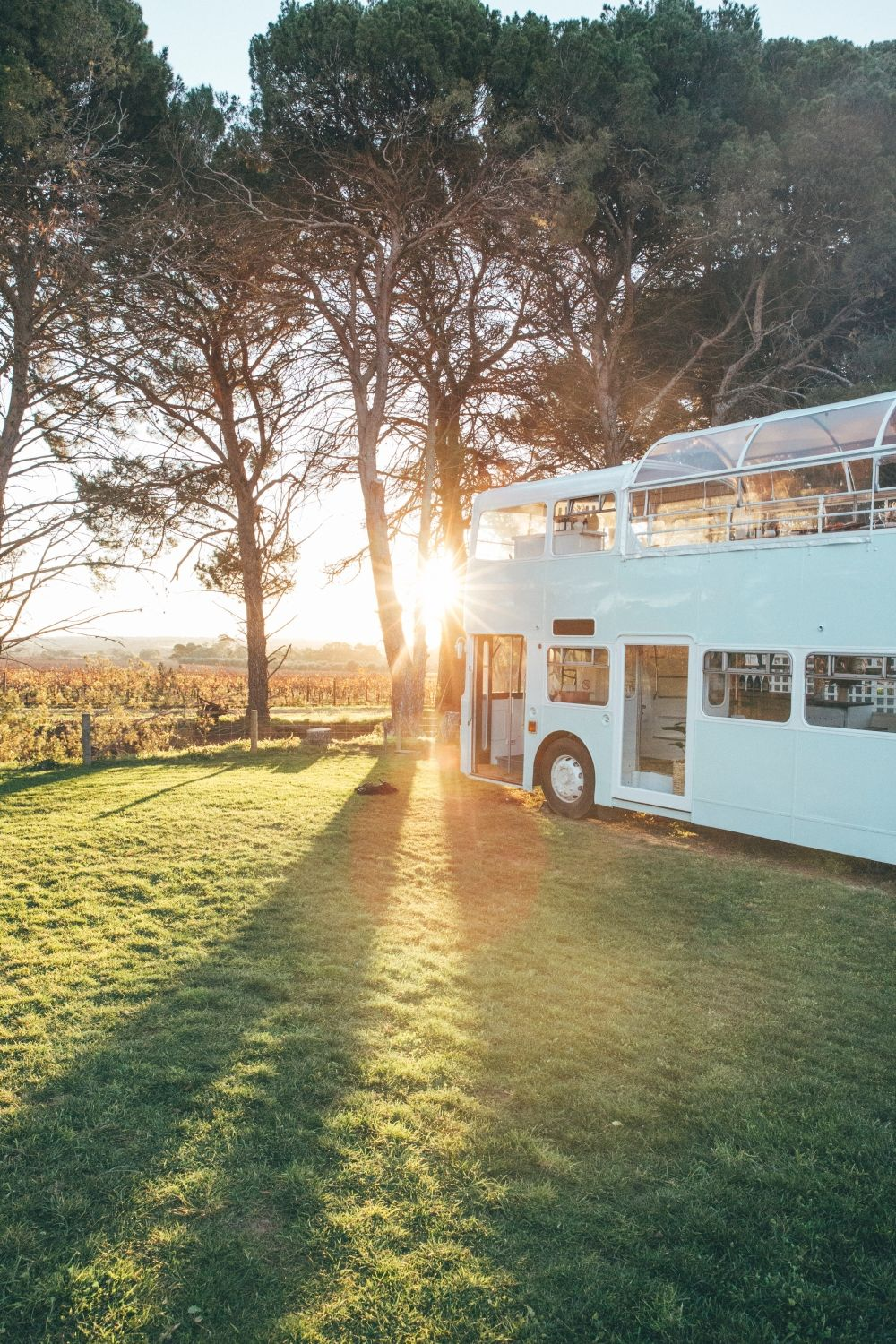 Hop on and dine in a powder blue double-decker bus at the winery. Photo: South Australia Tourism Commission