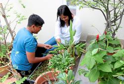 Have time on your hands at home? Try gardening