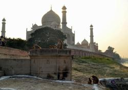 India's pride Taj Mahal damaged in deadly India thunderstorm