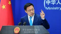 China seeks further support for WHO, rejects US power politics