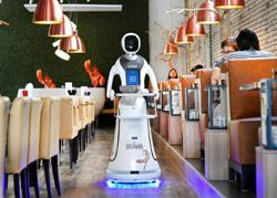 Robots dish out the drinks at reopened Dutch restaurant