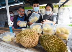 Sweet news for durian lovers