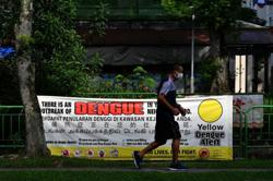 Singapore expects huge dengue outbreak this year, more than 8,000 infected and 12 dead so far