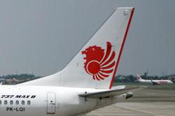 Indonesia's Lion Air halts flights temporarily due to pandemic
