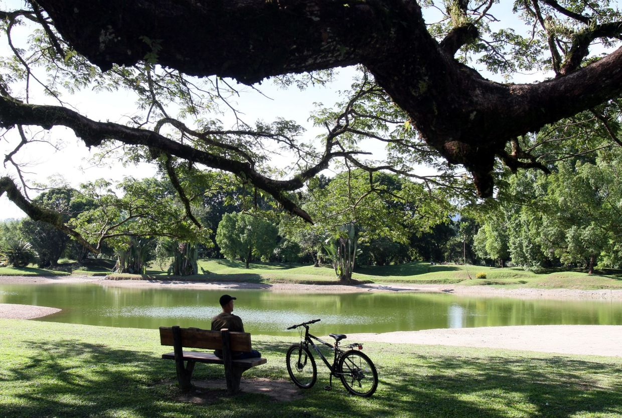 Taiping, with its famous Taiping Lake Gardens, is also one of the happiest cities in Malaysia.