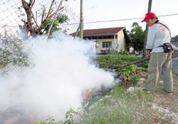 Dengue fear grips Johor folk