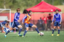 Japan's soccer federation announces new women's pro league