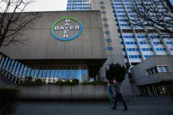 US court blocks sales of Bayer weed killer in United States