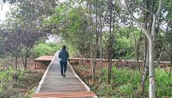 Nature reserves to reopen