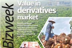 Perfect Hexagon delves into Malaysia's derivatives