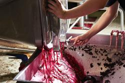 France to transform surplus wine into hand sanitiser