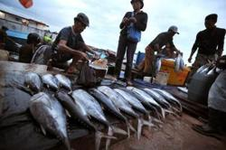 Indonesia's Riau Islands exports fishery products to China