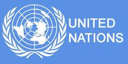 UN: Foreign direct investments to plunge 40 per cent this year