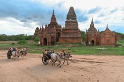 Domestic tourism back again
