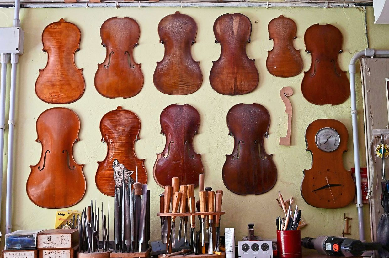 Top plates for violins in Conia's workshop.