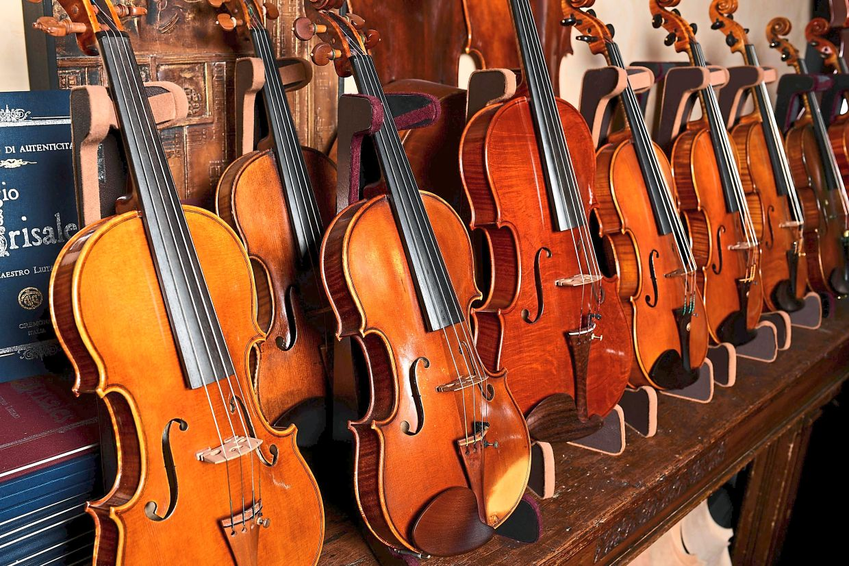 Violins displayed in the shop and workshop of Italian-Colombian Master luthier Grisales.