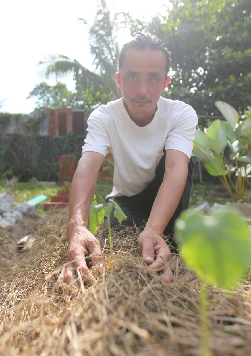 'Farming and living off the land is also connected to my art. To me, everything is one piece,' says Liew, who is now living in KongsiKL. Photo: The Star/Art Chen