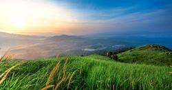 Broga Hill hiking area to close from June 27 due to SOP non-compliance