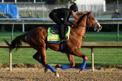 Kentucky Derby will open doors to spectators