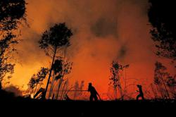 Indonesia bracing for land and forest fires