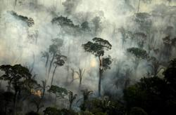 Fires in Brazil's Amazon jump in June, stoking fears for dry season