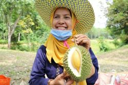 Pattani attracts China with its durian gems
