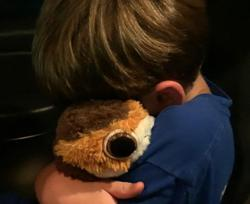 Social media helps reunite US child with stuffed animal. Twice.