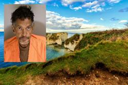Man carjacks vehicle then drives off a cliff, gets jailed after surviving the fall